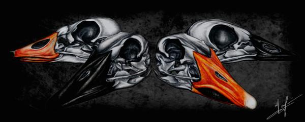 goose-skulls-small